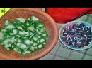 Village Food❤Karela Curry Recipe With Beans Seed Cooking in my Village Style Village Food Factory 61