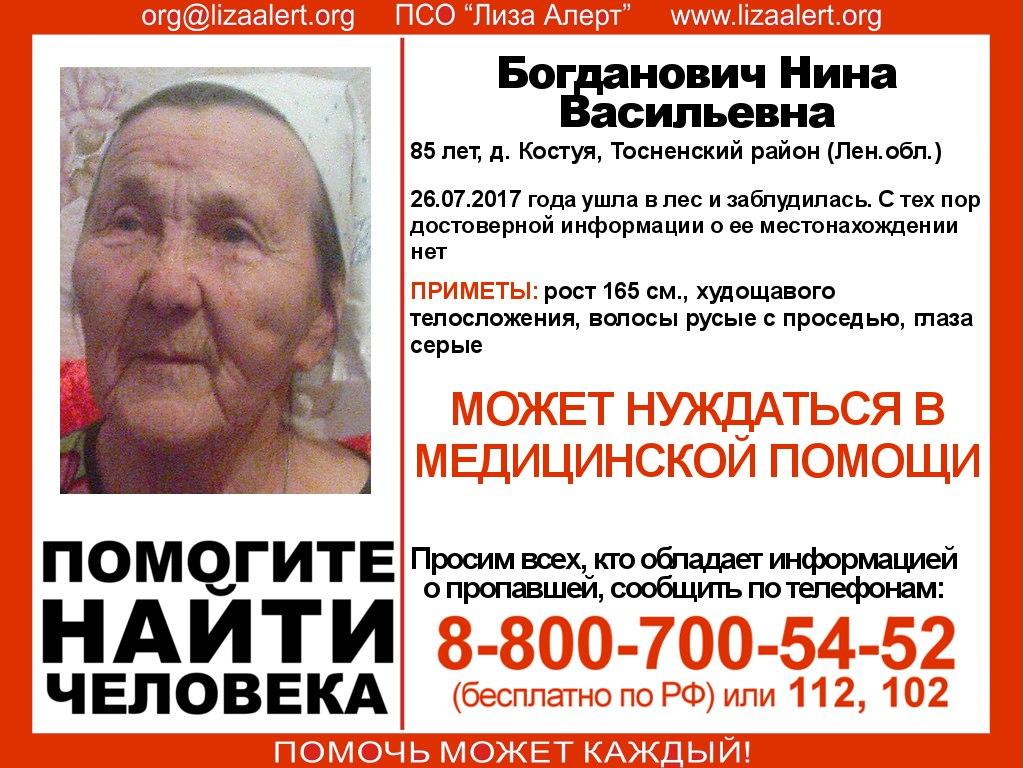 В Тосненском районе Ленобласти ищут загадочно пропавшую 85-летнюю пенсионерку