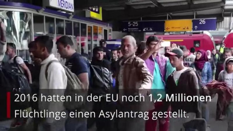 Zahl der Asylbewerber in Europa halbiert ein Drittel will weiterhin nach Deutschland