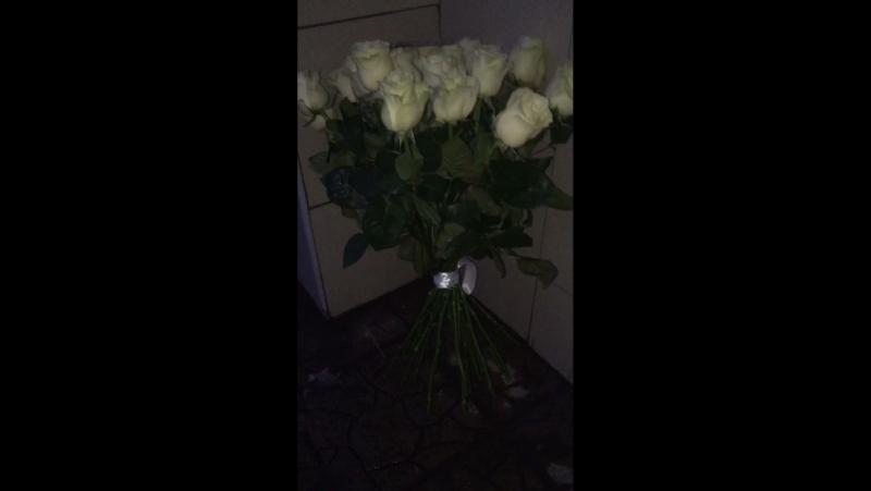 33 Розы Мондиаль