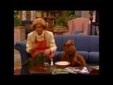 Alf Quote Season 1 Episode 14_Паутина