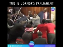 Парламент Уганды вирус мордобойства повсеместно распространяется