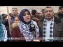 Gaza   Que brûle le drapeau de l'Amérique favorable à l'occupation israélienne Rapport   Hanadi Nasrallah غزة   ليحرق علم أمر