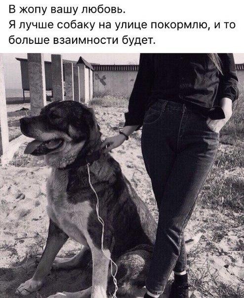 Фото №456258128 со страницы Данила Селихина