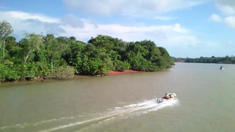 Река Амазонка 06