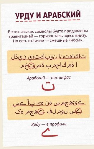 https://pp.userapi.com/c841333/v841333853/40ded/y-gc8VGS6wg.jpg