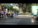 Вьетнам 2017
