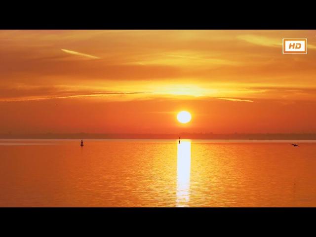 Meditation Music Relax Mind Body, Positive Energy Music ✿ Energy Vibration