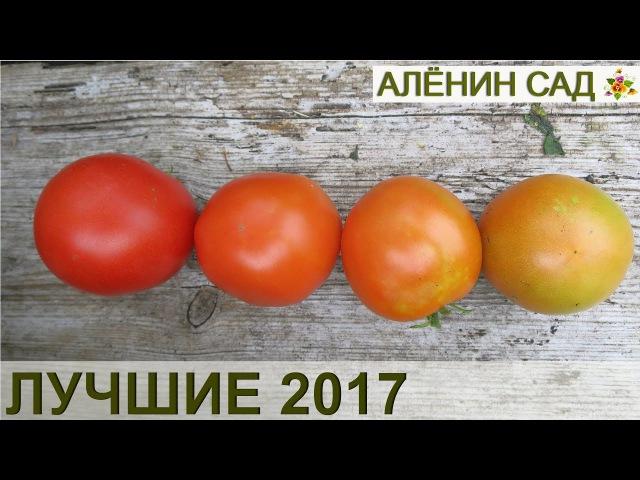 Лучшие томаты 2017 🍅 Сорта и гибриды 🍅 Теплица и открытый грунт 🍅 22 сорта