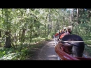 Прогулка в экипаже по Павловскому парку Павловск 3 августа