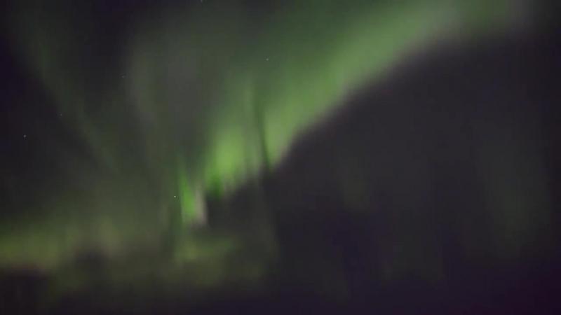 Живое видео северного сияния над Мурманском. Realtime aurora