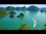 Вьетнамская музыка Винер