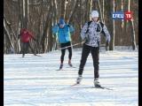 Зимний лес, снег, лыжи и ватрушки: городская лыжная база приглашает любителей активного отдыха #ЗдоровыйрегионЕлец