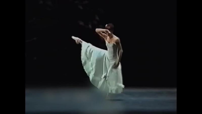 Sylvie Guillem в балете Jardin aux Lilas. Хореография Энтони Тюдор.