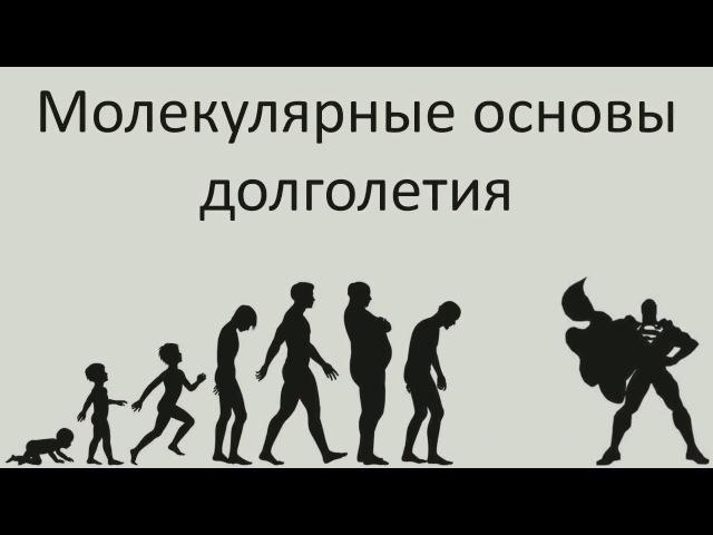 Молекулярные основы долголетия - Александр Панчин