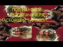 Форекс-кухня 100500 - ПРОВЕРЕНО, балабол!