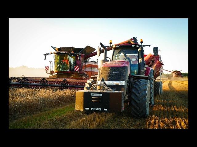 MEGA WIELKIE ŻNIWA 2017! 10x CASE! 5x STEYR! 4x Axial-Flow! MIRTRANS, BIG Harvest 2017! CaseTeam