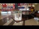Оборудование для вращения мебели Как дополнительно прорекламировать товар STUDIA 12