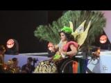Miss Wheelchair World 2017 (individual show)