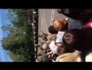 Присяга 22 июля 2012 г.Коломна в/ч 88612