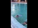 Прыжки в бассейн в отеле Palmira Muine