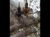 По адресу Ибрай Алтынсарина 44  утечка из труб