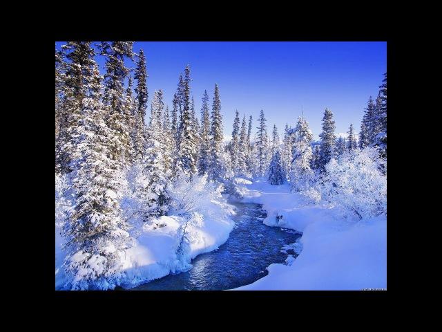Таяния снега весной видео.Весна,ручей в лесу.