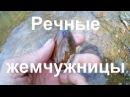 Одиночный сплав по р Койва Заброшенные кордоны ч 2