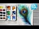 Как нарисовать перо павлина акварелью 365 арт дней День 5