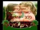 Video-0-02-05-7af39fa455b22eddb5003d36538186f581e2ad704d5519290d499a24289c1efb-