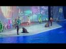 Шоу Затерянный мир в Москвариуме
