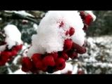 вот и осень. под музыку Владимир Асмолов - Вот и Осень (версия 2011). Picrolla