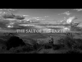 Трейлер «Соль земли» (Вим Вендерс, Джулиано Рибейру Сальгаду, 2014)