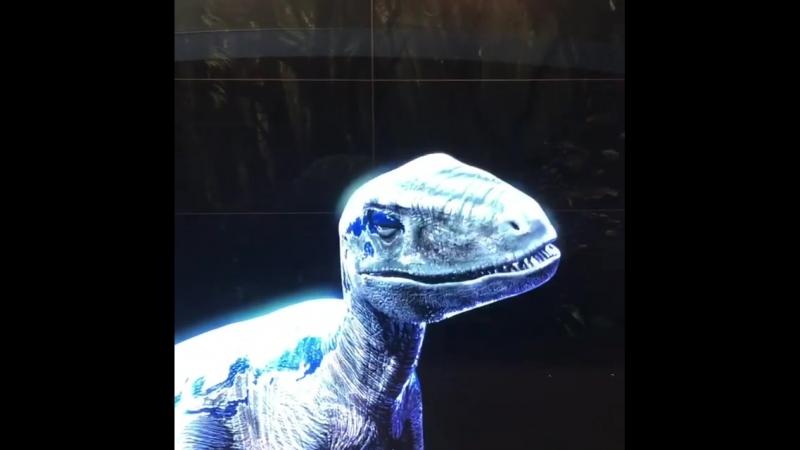 Holografic Dinosaur