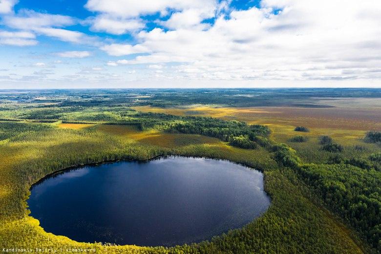 Правительство утвердило создание заповедника на Васюганских болотах
