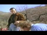NECRO-TV СТАРЫЕ ФИЛЬМЫ УЖАСОВ 80-Х [ЗВЕРЬ ВНУТРИ, СМЕРТЕЛЬНАЯ ЗАБАВА, ПОДВАЛ] (Full HD 1080p)