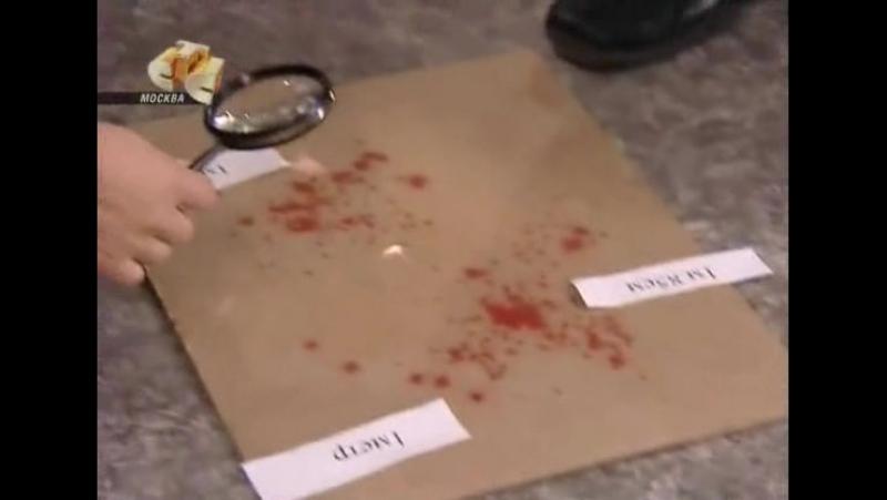 Безмолвный свидетель 1 сезон 84 серия (СТС 2006)