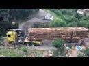 Мастер класс-лесовоз проезжает по узкому мосту...