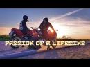 Passion Of A Lifetime Страсть длинною в жизнь