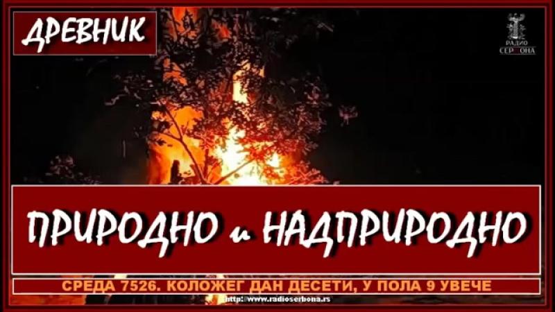 ДРЕВНИК бр.41 - ПРИРОДНО И НАДПРИРОДНО