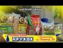 Зоомагазин Дружок (ноябрь 2016) - 15 сек гот