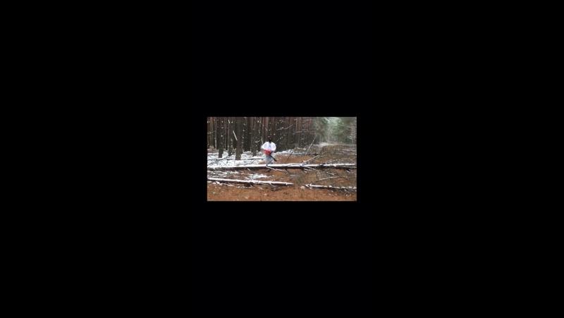OPTI MUS момент из «зачарованный лес»