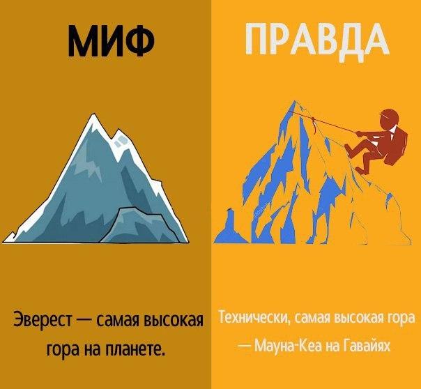 Больше мифов и фактов в сообществе  - умный журнал!