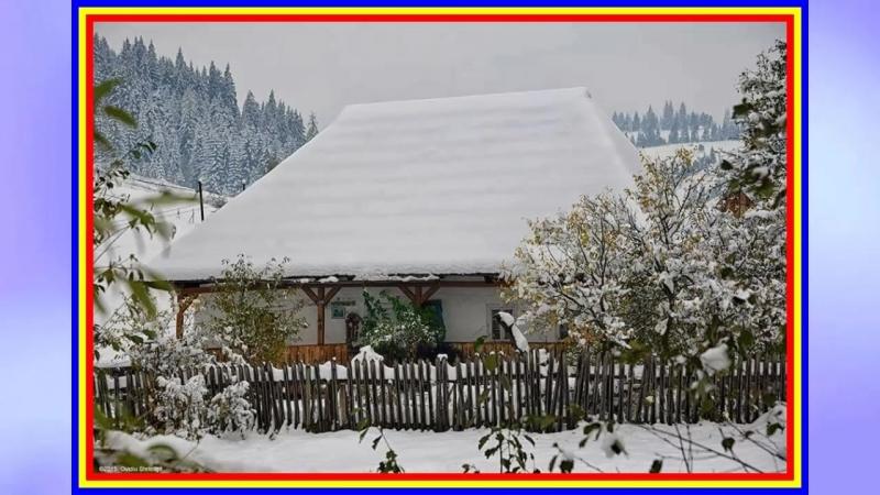 Raluca Patuleanu (nai) - Asta iarna era iarna