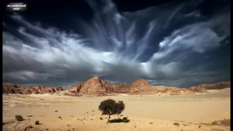 Пророк Муса (алейхи салям) и грешник которого простил Аллах