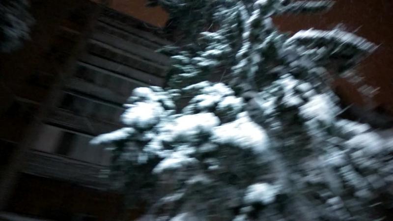 Снег идёт С вечера и всю ночь шёл мокрый снег Это наши ели все в снегу