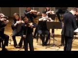Daniel Lozakovitj plays Beethoven Concerto in D major