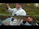 Бывает и такое...Рыбалка на реке. Спиннинг. Джерк