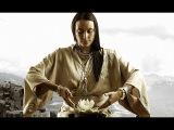 Елена Шапаренко. Тибетские законы здоровья.