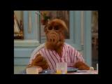 Alf Quote Season 2  Episode  22_Холестерин